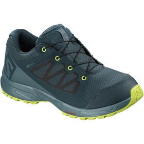 Salomon XA Elevate CSWP Shoes Junior reflecting pond/hydro./acid lime